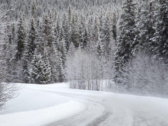 Izlet na snijeg :)